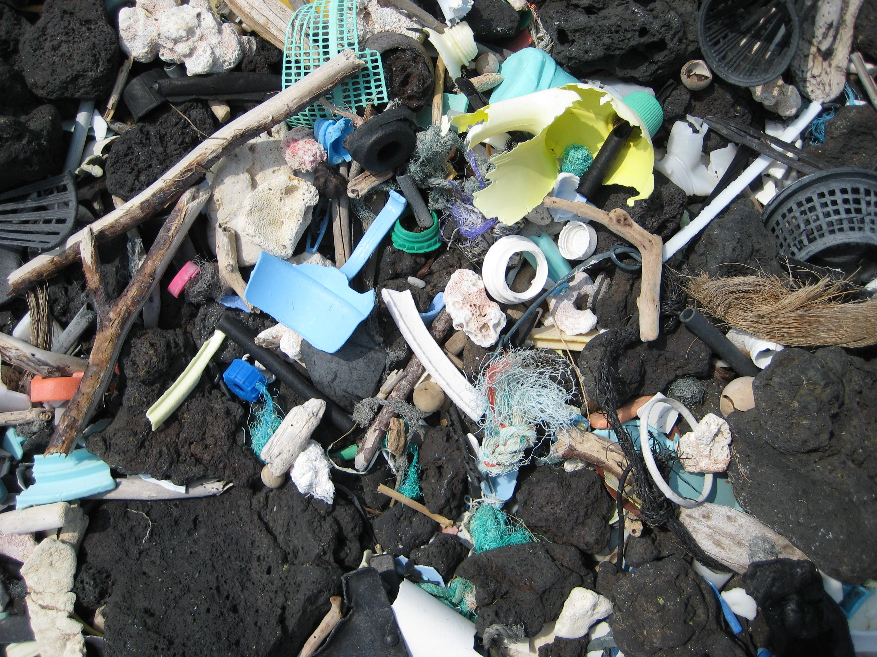 Plastic pollution ocean hawaii - PD NOAA